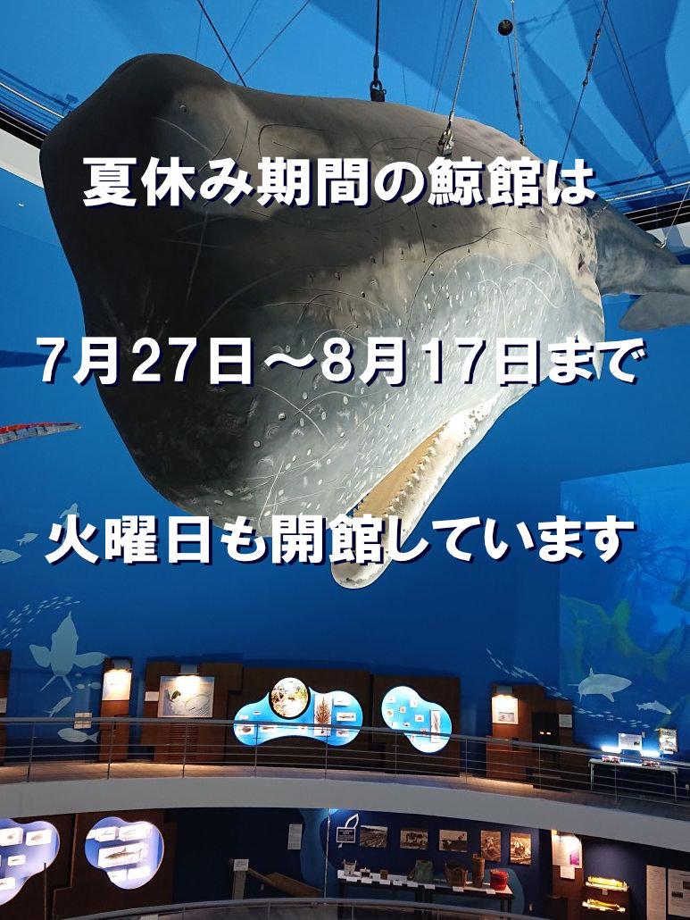 鯨館は夏休み期間中、火曜日も開館します